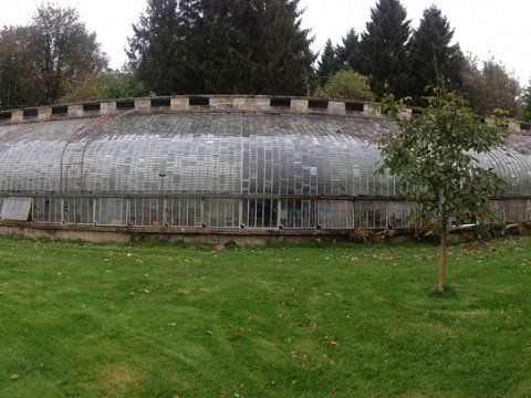The glasshouse in desperate need of restoration