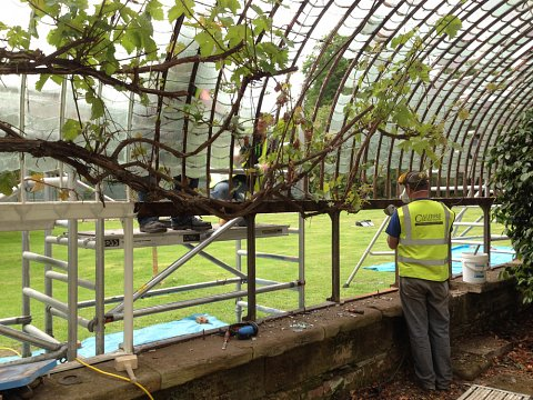 The glasshouse receiving much needed restoration